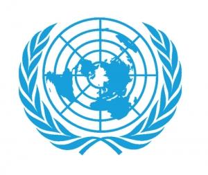 T&D & United Nations Procurement Division (UNPD)