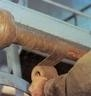 Denso Tapes, Densyl Mastic, Densoseal - Waterproofing, Sealing & Corrosion Protection