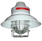 FEAM EVAC Hazardous Area Lighting  Zone 1 & Zone 2 Incandescent and Discharge Lamps
