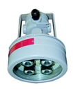 FEAM EVAC-LED Hazardous Area Lighting  Zone 1 & Zone 2 LED Lamps