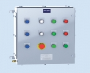 Control Panels - Stainless Steel Hazardous Area ATEX - Walsall Panel XLCP6 - 480x480x150mm