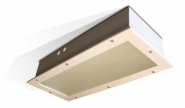 Zone 1 (ATEX) Recessed Luminaires Hadar HDL102 - (Twin 18 Watts)
