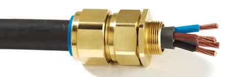 CMP CW LSF Solo Cable Glands