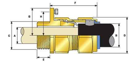 CMP CW CIEL Brass Cable Gland