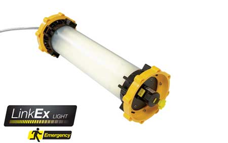 LinkEx� Portable Fluorescent Leadlamp Emergency